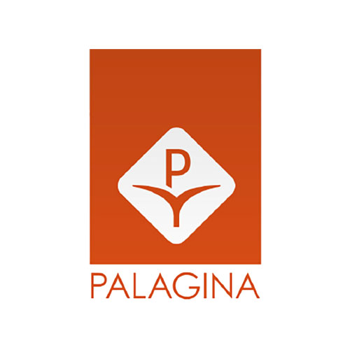 logo-palagina